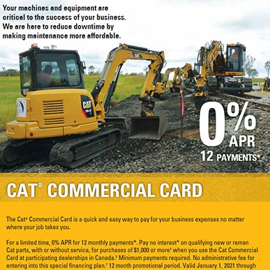 cat card flyer 1