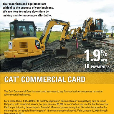 cat card flyer 2