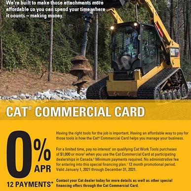 cat card flyer 3