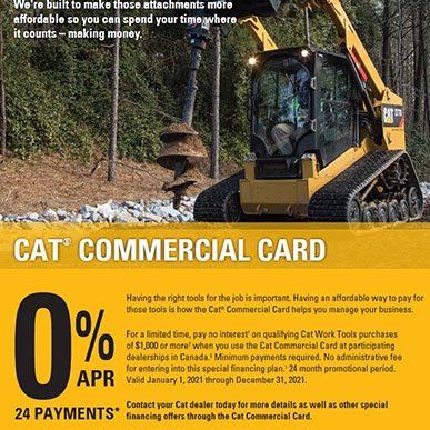 cat card flyer 4